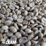 View Sumatra Noesantara Aged coffees