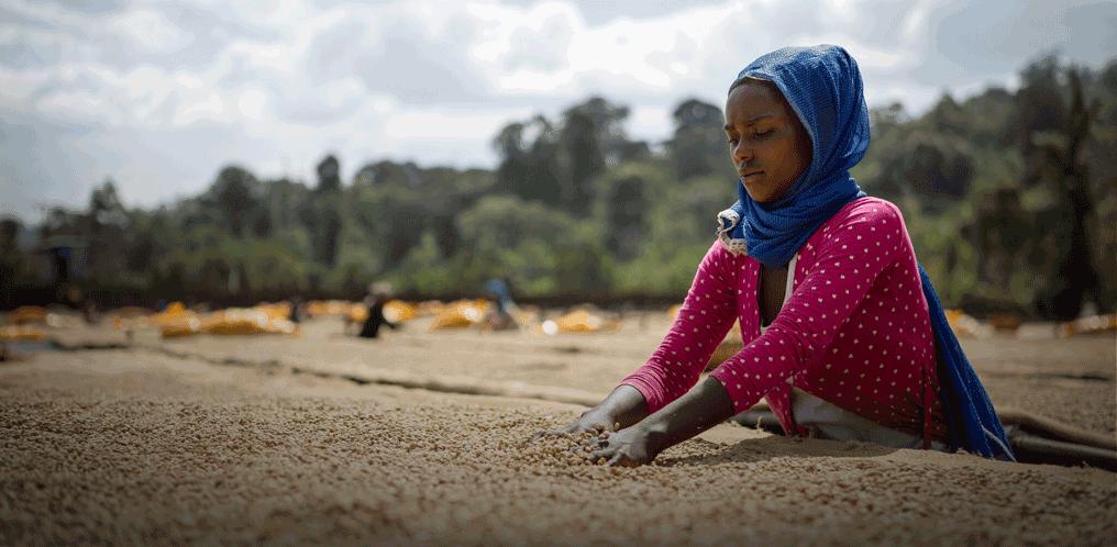 Ethiopia '19