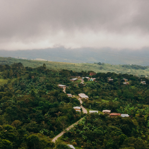 Shop Coffees Grown at High Altitudes