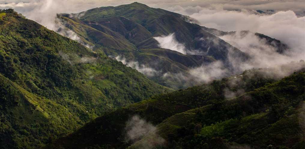 Peru'19